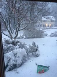 Neighborhood in Silver Spring, MD