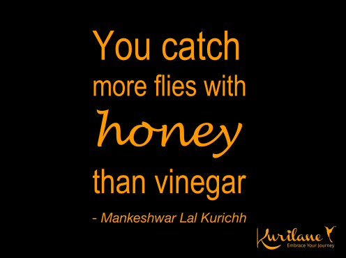 Flies With Honey