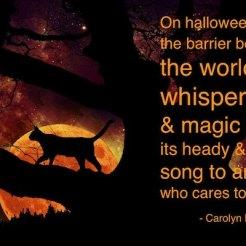 Feel the magic!