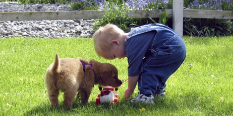 Toddler and Puppy