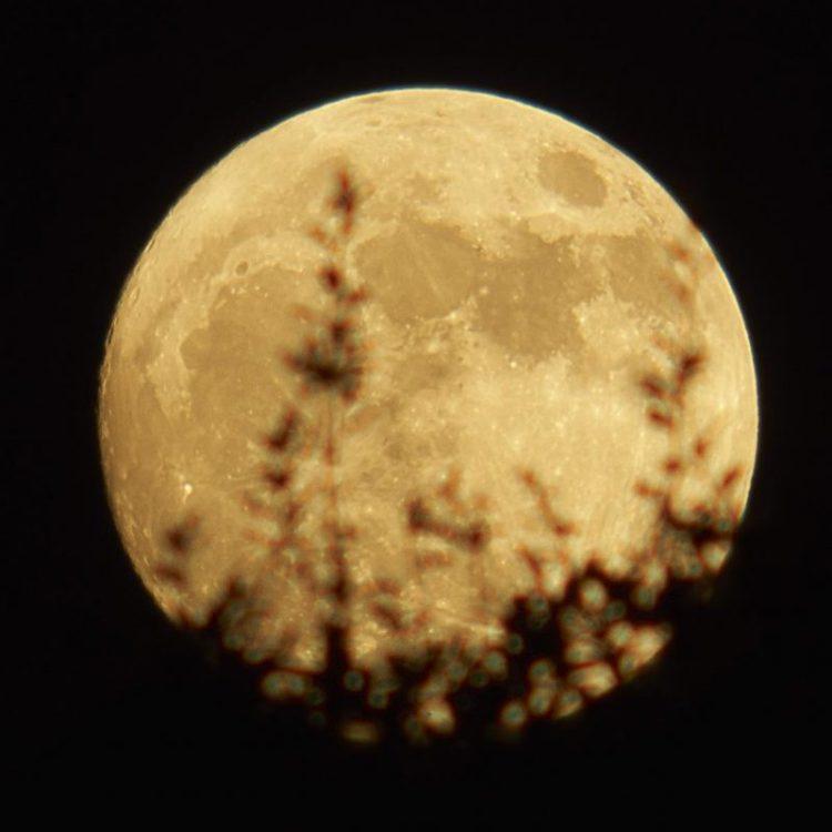 Austin, TX Super Moon