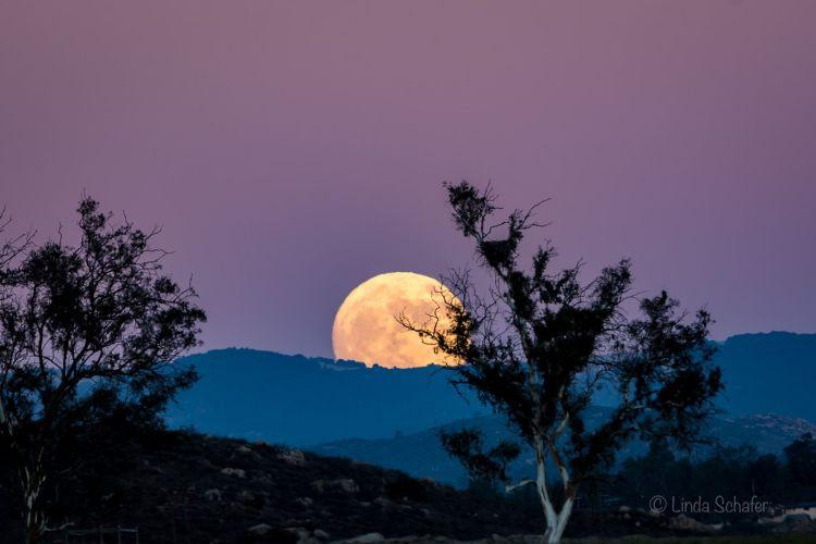 Ramona, CA Super Moon
