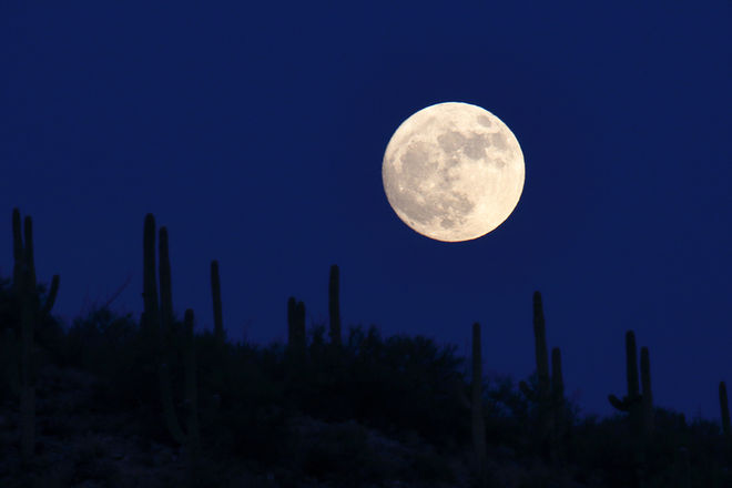 Sonoran Desert Super Moon